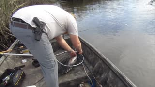 A redfish fishing trip in South Carolina