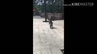 Funny Monkey Riding Bicycle