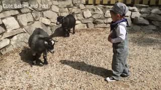 Baby Fanny The Cutest Kids and Animals