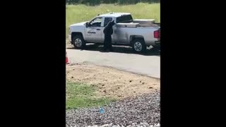 Bear Breaks into Truck and Leaves with Lunch