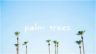 Free Music-MBB-Palm Trees