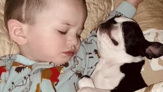 Cuddles and Snores While Snoozing With Special Friend