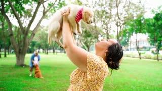 OMG ! Puppy Licking a Woman so cute