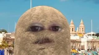 Freedom potato