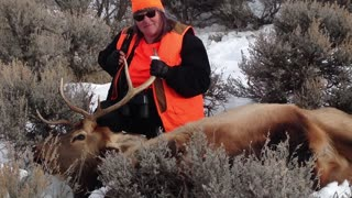 2015 a great year outdoors!