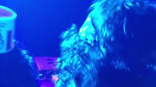 Buckethead Concert