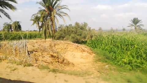 How The Country Side Looks Like On Way To Wadi El Rayan Egypt
