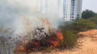 Incendio en Floridablanca