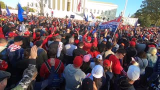 Million Maga March, Washington D.C.