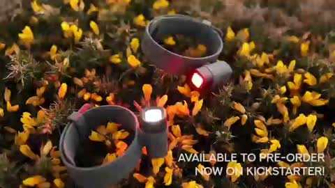 ALVA: The Universal Hands-free Lighting Solution