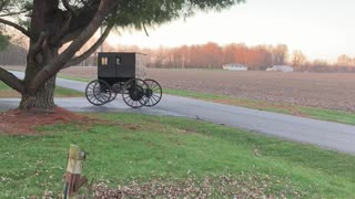 Self Powered Amish Buggy