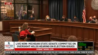 Witness #17 testifies at Michigan House Oversight Committee hearing on 2020 Election. Dec. 2, 2020.