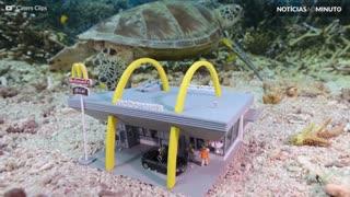 Artista recria cenários em miniatura de baixo d'água!