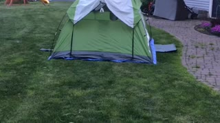 Camping with a surprise