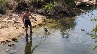 Bored Guy Playing with Gators During Self Isolation