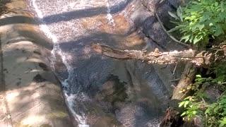 water from the footbridge