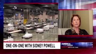 Sidney Powell on Voter Fraud