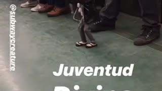 Subway puppet dancing music sing