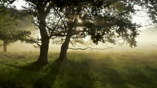 Romantic Peaceful Music for Deep Thinking, Meditation, Stress Relief, Yoga