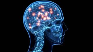 Atlantian Transformation secrets Vagus Nerve Second Brain Healing