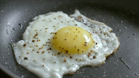 Eggs on the fair