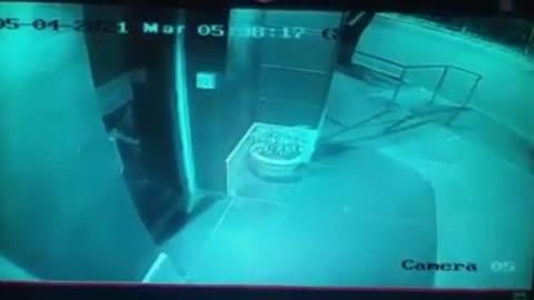 Puma captado por camaras en centro dela cuidad