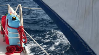 Sailing near Miami
