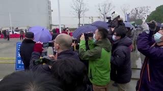 WHO investigation team visits Wuhan market
