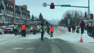 Traffic Stops for Dog Sled Race