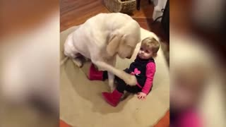 Dogs and Babies are Best Friends Forever