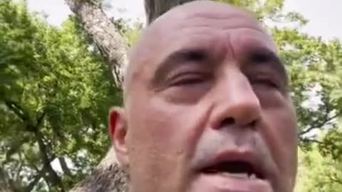 Joe Rogan Announces He Has COVID-19 And Feels Great After Ivermectin And Multi-Drug Treatment
