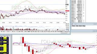 Day Trade Recap - 1.7.21 $PDD $PLUG