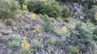 Gorgeous Trail View