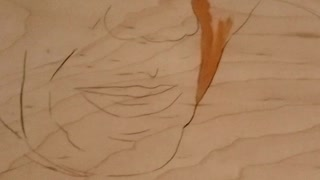 Hyperlapse painting
