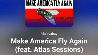 MAKE AMERICA FLY AGAIN