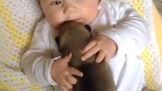 Adorable Babies Playing With Dogs Compilation 2021