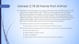 Journey Through the Bible Genesis Chapter 2 - Welcome to Eden
