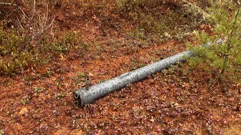 Wet woods, quiet moment, irrigation artifact.