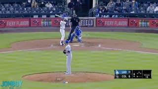 cat invades baseball field
