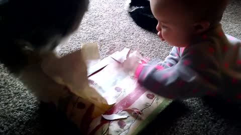 Helpful Puppy Helps Tiny Baby Open Her Christmas Present