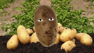 Potato, potahto