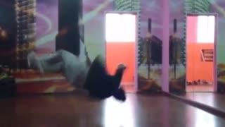 Guy break dances and slams the floor hard