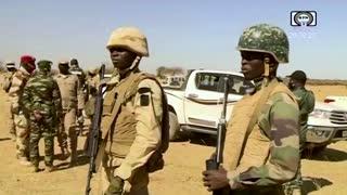 Niger attacks killed 100, says prime minister
