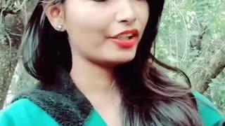 status song hinsi song