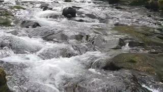 Serene Necarney Creek