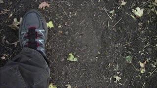 Study of Sasquatch Footprints