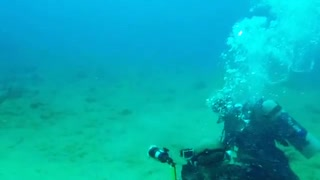 Experienced Divers Photographing Big Fishes Under Water
