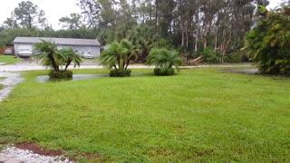 Outside during Florida Hurricane