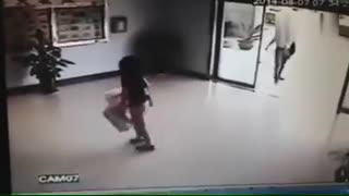 Dog crash with Mirror