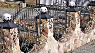 Top Most Beautiful Fences for A Private House